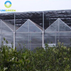 Good Quality Multi Span Polycarbonate Flower