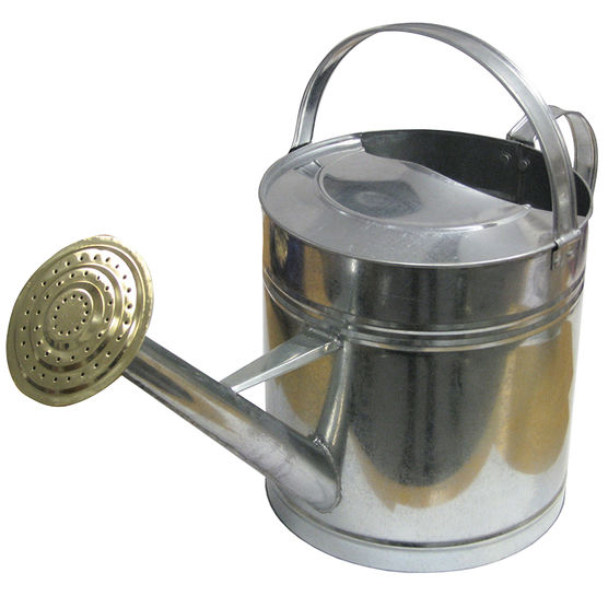 galvanized watering can.jpg
