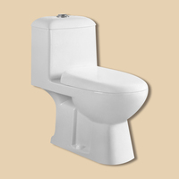 High quality cheap small size one piece ceramic bathroom toilet