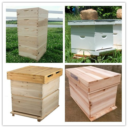 10 Frame Langstroth Insulated Bee Hive Set