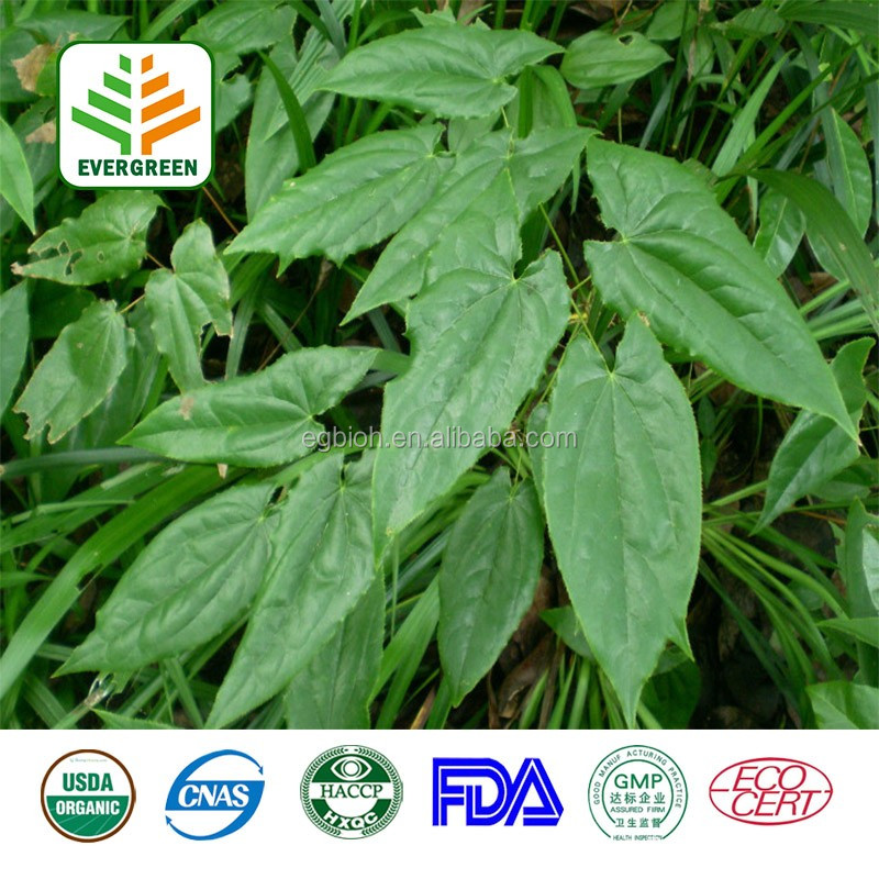 Hot sale factory supply epimedium leaf extract Icariin 10%-98% HPLC