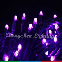 zhongshan art holiday living lights,RGB led light,decorative lighting