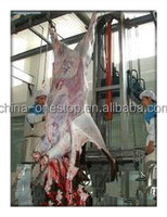 cattle processing equipment capacity 400 heads per day