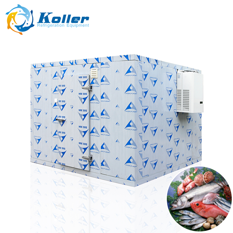 all in one easy installation movable mobile cold containerized room for ice fruits vegetable fish milk chicken storage