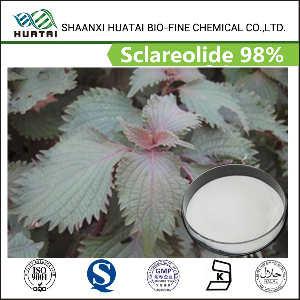 Free sample herbal extract sclareolides 98% powder from clary sage