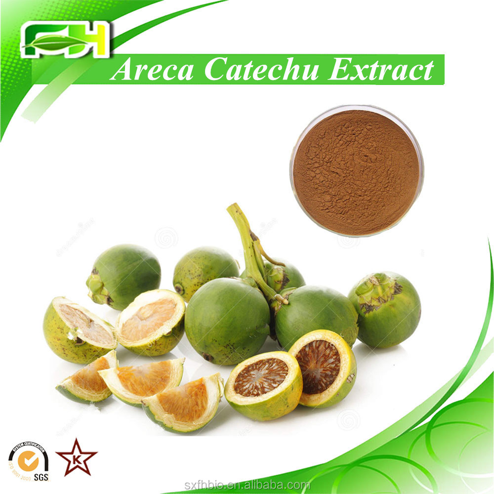 100% Natural Areca Nut Extract, Areca Nut Extract With Arecoline