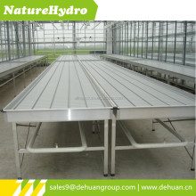 Ebb and flow table hydroponic trays for vegetable growing