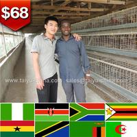 Design modern chicken farm chicken layer cage for laying hens