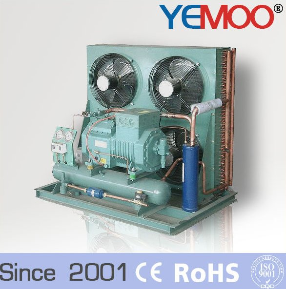 R22 cold room refrigeration units R404a air cooled condensing unit for cold storage with Bitzer compressor