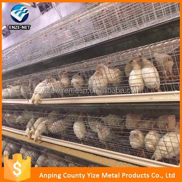 galvanized material chicken use egg hen layer cage /hot dipped galvanized stainless steel wire mesh chick(best seller in africa)