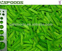 TOP SALE Chinese IQF frozen pea pods