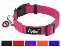OEM Wholesale Solid Basic Plain Nylon Pet Puppy Dog Fancy Collars with Pendant and Brand Logo
