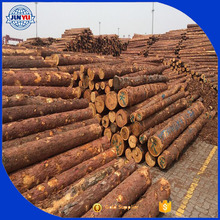 Round Wood Pine Logs for Sale
