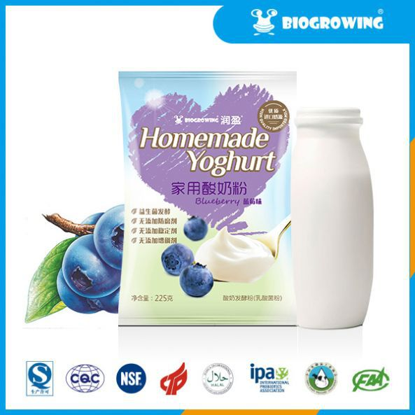 blueberry taste lactobacillus live yogurt brands