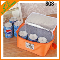 2013 hot sale 6 tin cooler bag