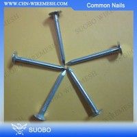 Hot Sale! Cheap Iron Bright Polished Common Nail Coil Common Nail 10D Common Nails