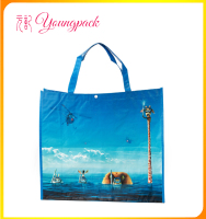 High Quality Factory Durable PP Woven Shopping Bags