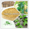 eucommia leaf extract chlorogenic acid