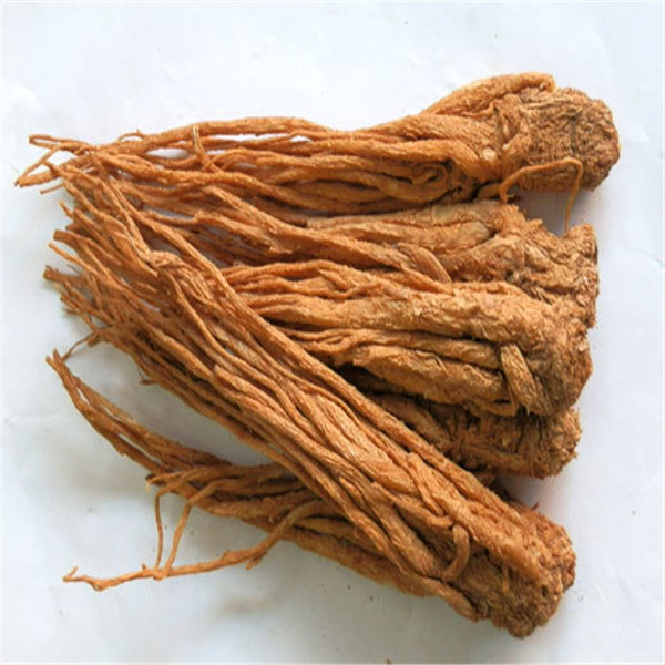 angelica sinensis , angelica sinensis extract powder, natural anglica sinensis extract raw powder 1% ligustilide