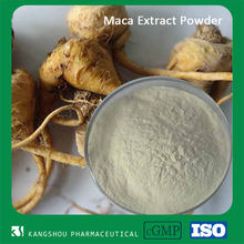 Superfood Maca root extract powder energy boost maca herb
