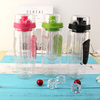 Large 32oz 2017 fruit infuser water bottle oem with bpa free eco friendly