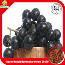 GRAPE SEED EXTRACT POWDER/95% procyanidine antioxidant benefit