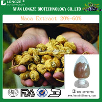 Professional manufactory supply pure maca extract/maca powder/organic maca extract sexual enhancement