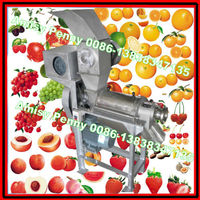 hot sale electric fruit crusher/fruit crushing machine for sale/ 0086-13838347135