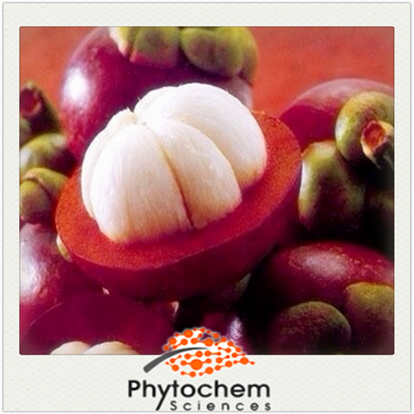 Queen of Fruits product Mangosteen Extract 5%-50% Mangostin
