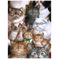Funny Cats mosaic diamond painting ,diy diamond painting embroidery ,diamond painting kit