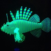 Newest popular cheap aquarium decoration Silicone glow in the dark lion fish for tank,simulation of lion fish