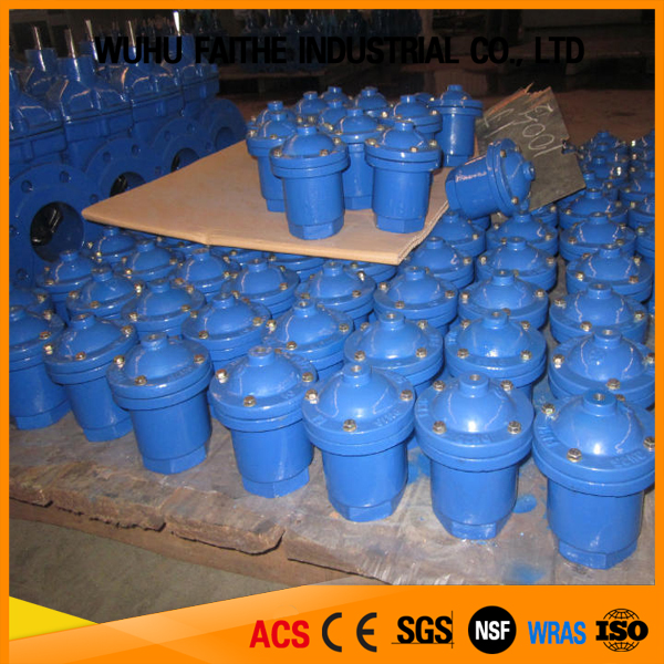 China Supplier High Quality Air Pressure Release Valve