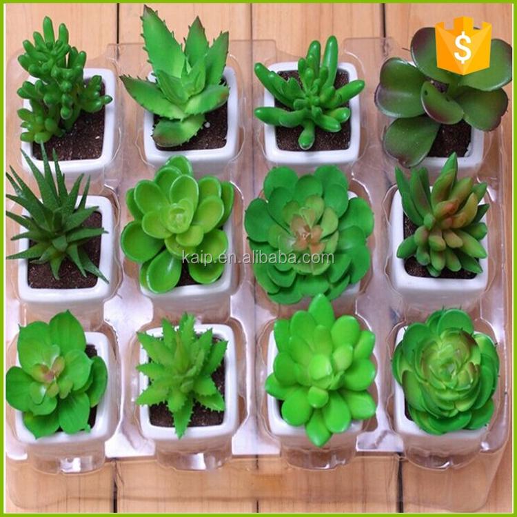 Grossiste plante artificielle pas cher acheter les for Mini plante pas cher