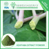 Antiviral product Ashitaba Extract Powder in 10:1 Imperatorin FREE sample