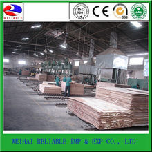 Practical Excellent Quality plywood curved hot press