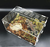 Small hot selling cheap acrylic reptile display cages