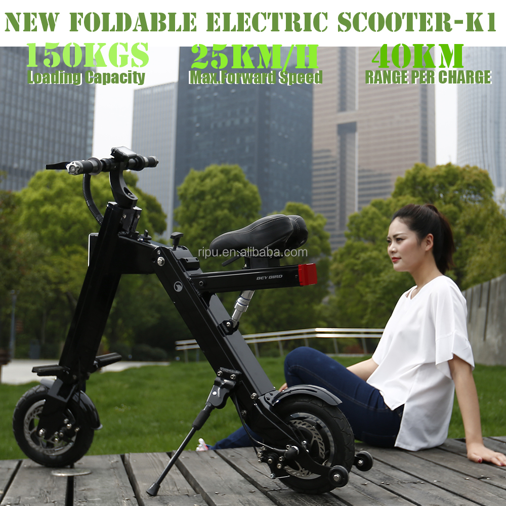 Two Wheel folding Electric Mobility Scooter
