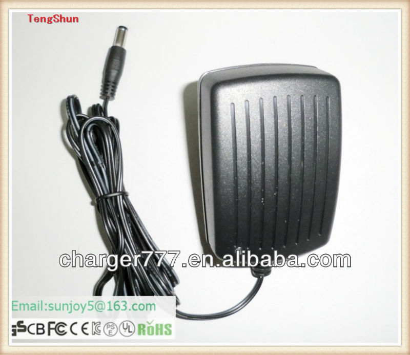 12 volt car battery charger