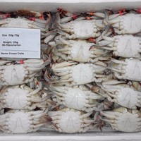 Panjin Frozen Crab 50 75g For