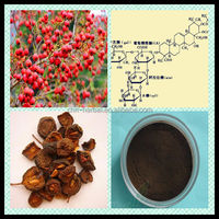 Chinese hawthorn extract/Hawthorn Berry P.E of chlorogenic acid