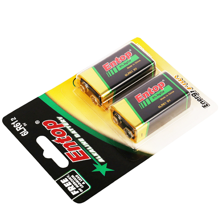 17 Years OEM and ODM Manufacturer Excellent Quality and Competitive alkaline battery 9V