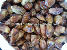 Zahidi Dates (Juicy)