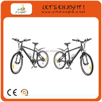 2012 new product electric bicycle with 36V/10Ah li-ion battery, 140km range per charge, electric mountain bike
