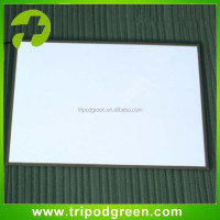 High Brightness A4 EL Backlight /EL Panel/EL Sheet with DC12V inverter