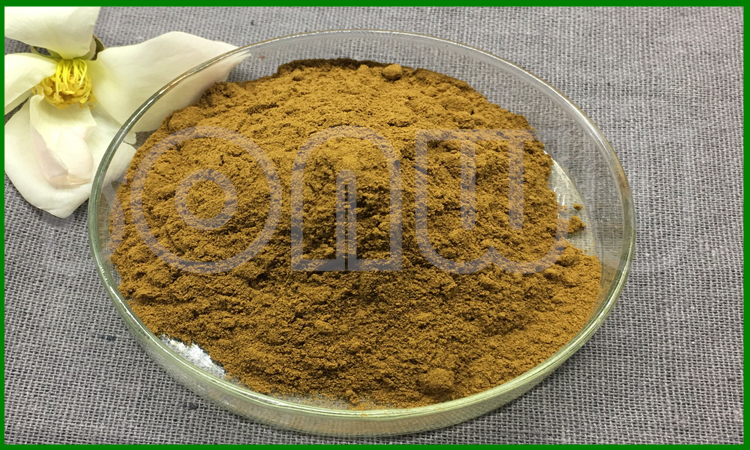Best price ginkgo biloba leaf extract powder 24% Ginkgetin