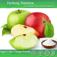apple cider vinegar powder 100% Pure With High Quality