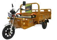 Wholesale electric tricycle online, strong motor power auto rickshaw /electric bike