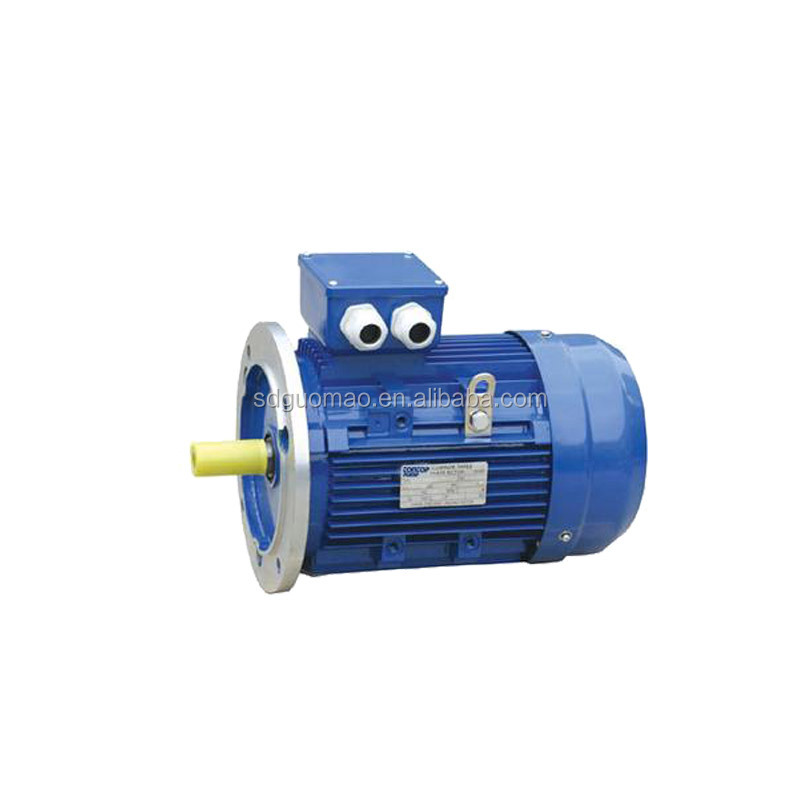 Light Weight 110 volt single phase electric motors