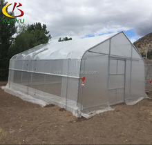 8M single span high tunnel greenhouse