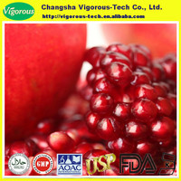 natural pomegranate best price/pomegranate concentrate extract powder for free sample